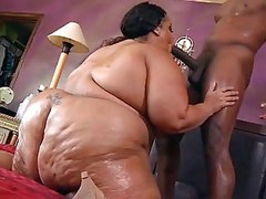 BBW,Big Boobs,Black and Ebony,Blowjobs,Cumshots